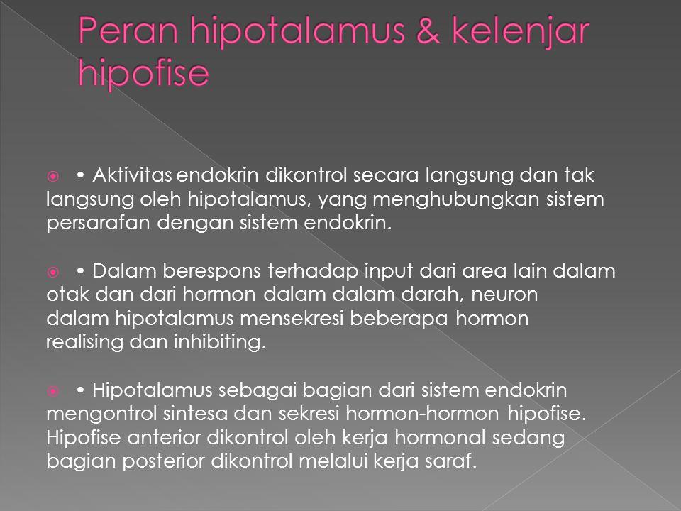  Aktivitas endokrin dikontrol secara langsung dan tak langsung oleh hipotalamus, yang menghubungkan sistem persarafan dengan sistem endokrin.  Dalam