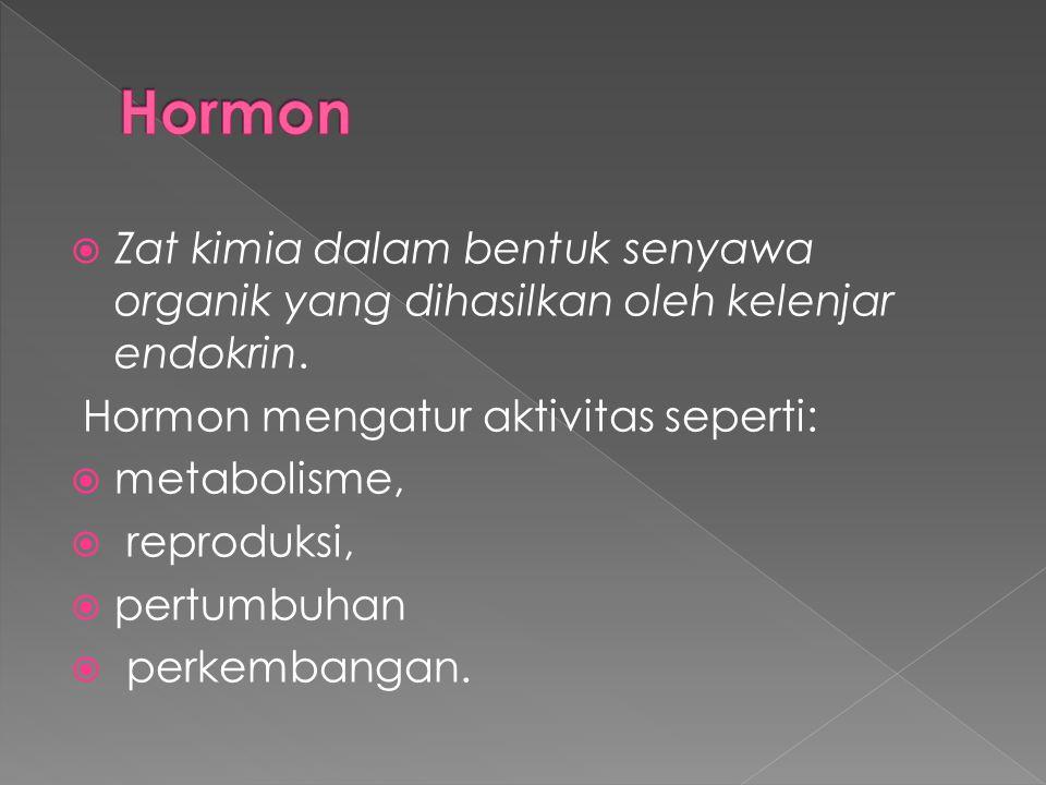  Zat kimia dalam bentuk senyawa organik yang dihasilkan oleh kelenjar endokrin. Hormon mengatur aktivitas seperti:  metabolisme,  reproduksi,  per