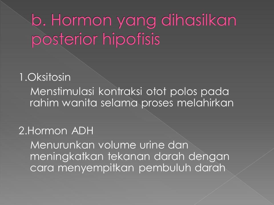 1.Oksitosin Menstimulasi kontraksi otot polos pada rahim wanita selama proses melahirkan 2.Hormon ADH Menurunkan volume urine dan meningkatkan tekanan