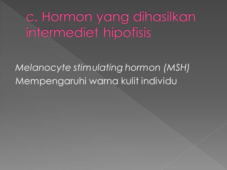 Melanocyte stimulating hormon (MSH) Mempengaruhi warna kulit individu