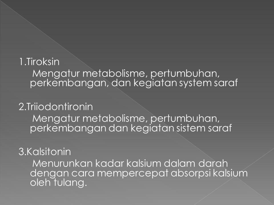 1.Tiroksin Mengatur metabolisme, pertumbuhan, perkembangan, dan kegiatan system saraf 2.Triiodontironin Mengatur metabolisme, pertumbuhan, perkembangan dan kegiatan sistem saraf 3.Kalsitonin Menurunkan kadar kalsium dalam darah dengan cara mempercepat absorpsi kalsium oleh tulang.