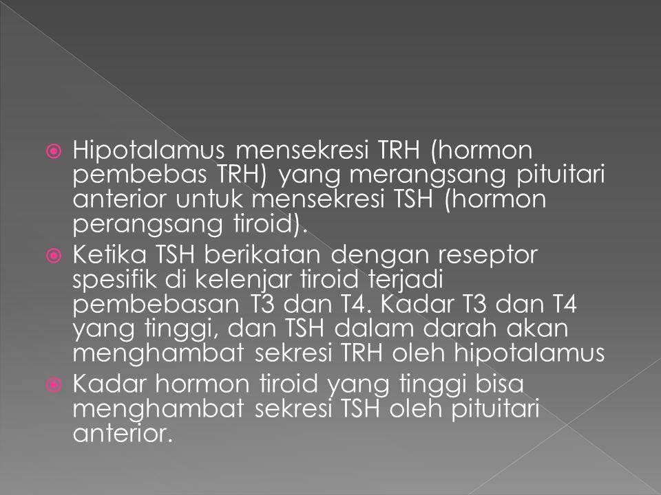  Hipotalamus mensekresi TRH (hormon pembebas TRH) yang merangsang pituitari anterior untuk mensekresi TSH (hormon perangsang tiroid).  Ketika TSH be