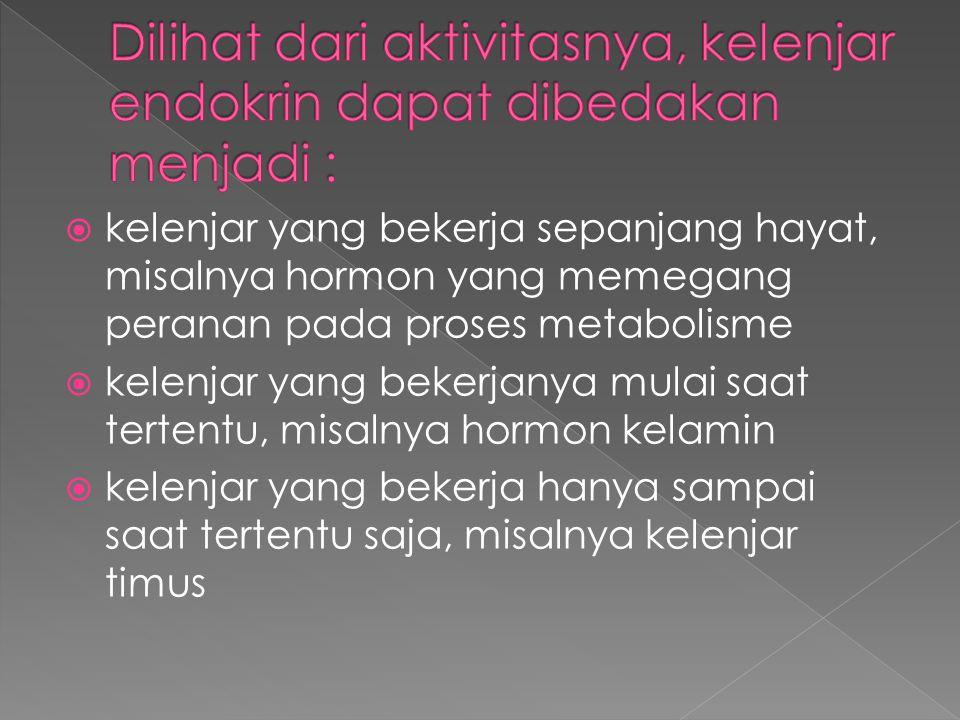 kelenjar yang bekerja sepanjang hayat, misalnya hormon yang memegang peranan pada proses metabolisme  kelenjar yang bekerjanya mulai saat tertentu,