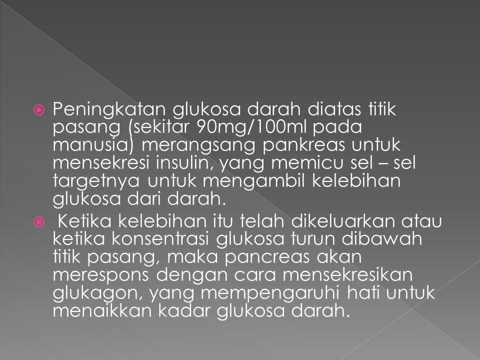  Peningkatan glukosa darah diatas titik pasang (sekitar 90mg/100ml pada manusia) merangsang pankreas untuk mensekresi insulin, yang memicu sel – sel