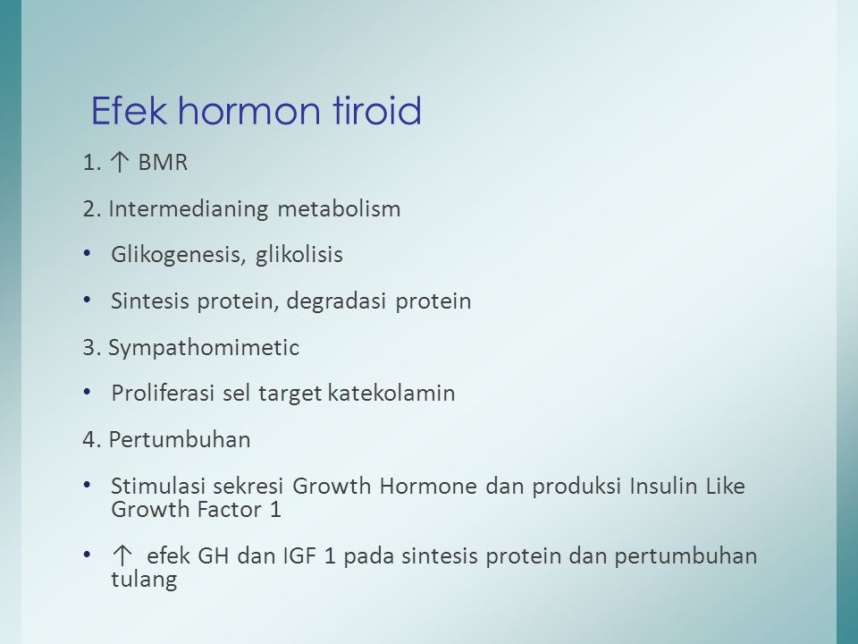 1. ↑ BMR 2. Intermedianing metabolism Glikogenesis, glikolisis Sintesis protein, degradasi protein 3. Sympathomimetic Proliferasi sel target katekolam