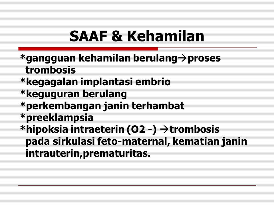 SAAF & Kehamilan *gangguan kehamilan berulang  proses trombosis *kegagalan implantasi embrio *keguguran berulang *perkembangan janin terhambat *preeklampsia *hipoksia intraeterin (O2 -)  trombosis pada sirkulasi feto-maternal, kematian janin intrauterin,prematuritas.