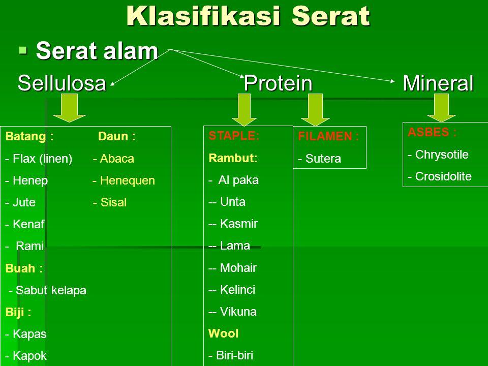 Klasifikasi Serat  Serat alam Sellulosa Protein Mineral Batang : Daun : - Flax (linen) - Abaca - Henep - Henequen - Jute - Sisal - Kenaf - Rami Buah : - Sabut kelapa Biji : - Kapas - Kapok STAPLE: Rambut: - Al paka -- Unta -- Kasmir -- Lama -- Mohair -- Kelinci -- Vikuna Wool - Biri-biri FILAMEN : - Sutera ASBES : - Chrysotile - Crosidolite