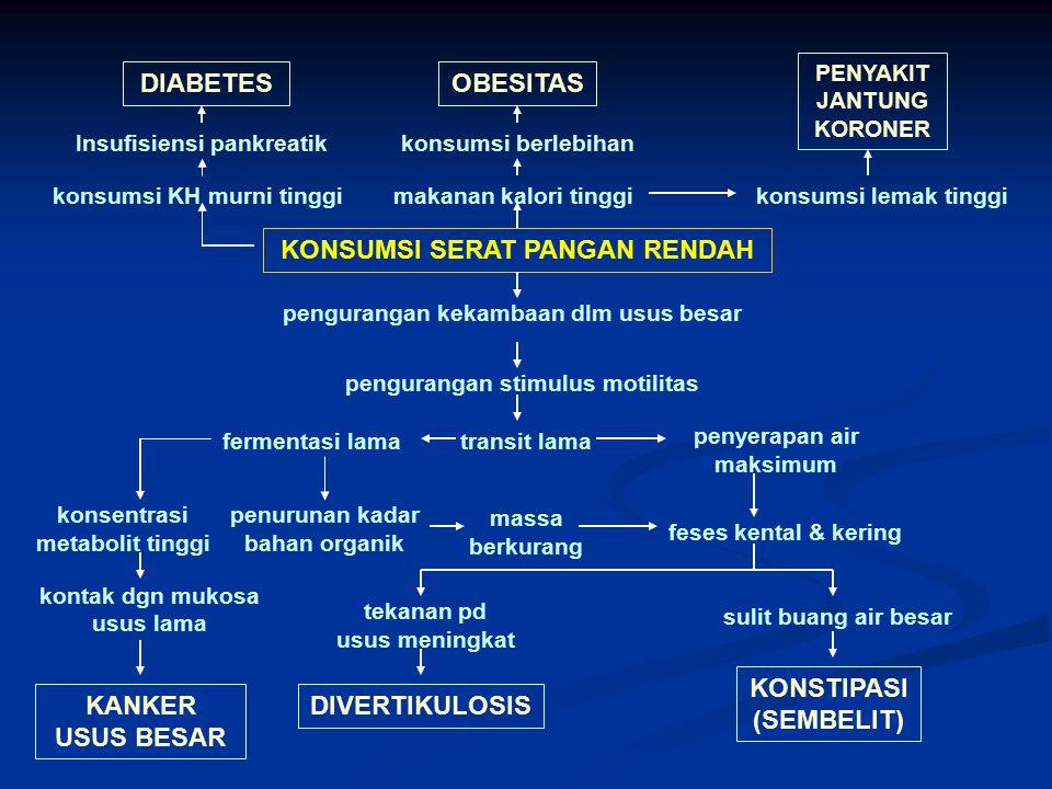 KONSUMSI SERAT PANGAN RENDAH konsumsi KH murni tinggi Insufisiensi pankreatik DIABETESOBESITAS makanan kalori tinggi konsumsi berlebihan konsumsi lema