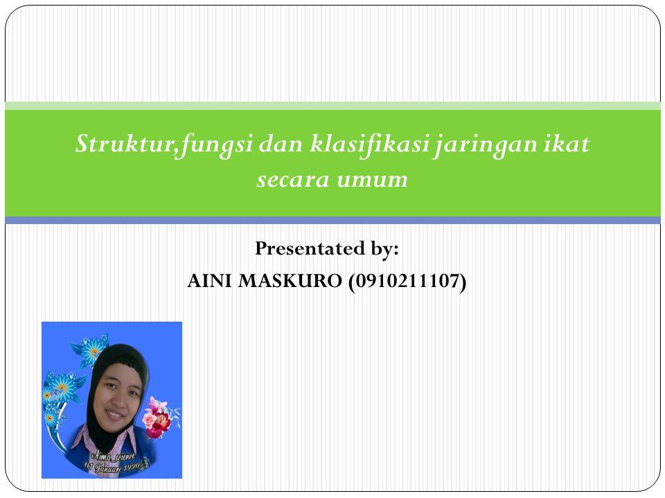 Presentated by: AINI MASKURO (0910211107) Struktur,fungsi dan klasifikasi jaringan ikat secara umum