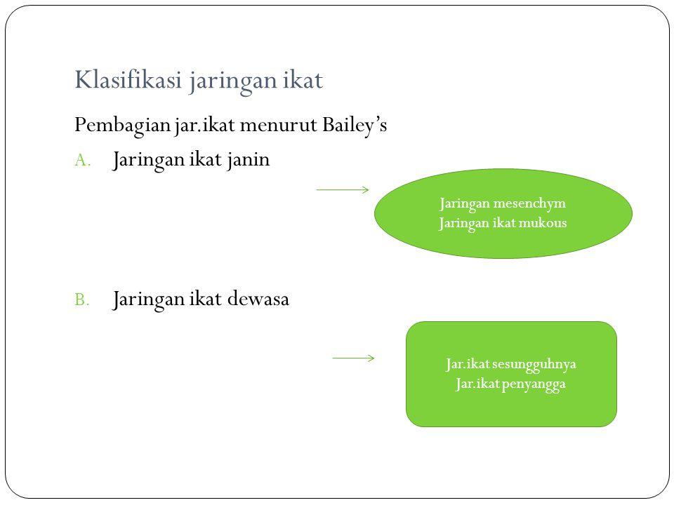Klasifikasi jaringan ikat Pembagian jar.ikat menurut Bailey's A. Jaringan ikat janin B. Jaringan ikat dewasa Jaringan mesenchym Jaringan ikat mukous J