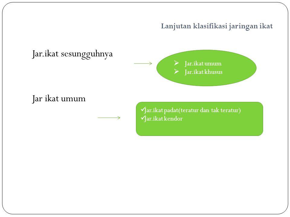 Lanjutan klasifikasi jaringan ikat Jar.ikat sesungguhnya Jar ikat umum  Jar.ikat umum  Jar.ikat khusus Jar.ikat padat(teratur dan tak teratur) Jar.i