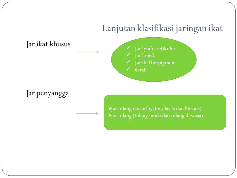 Lanjutan klasifikasi jaringan ikat Jar.ikat khusus Jar.penyangga Jar.lymfo-retikuler Jar.lemak Jar.ikat berpigmen darah  Jar.tulang rawan(hyalin,elas