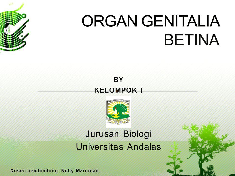 BY KELOMPOK I Jurusan Biologi Universitas Andalas Dosen pembimbing: Netty Marunsin