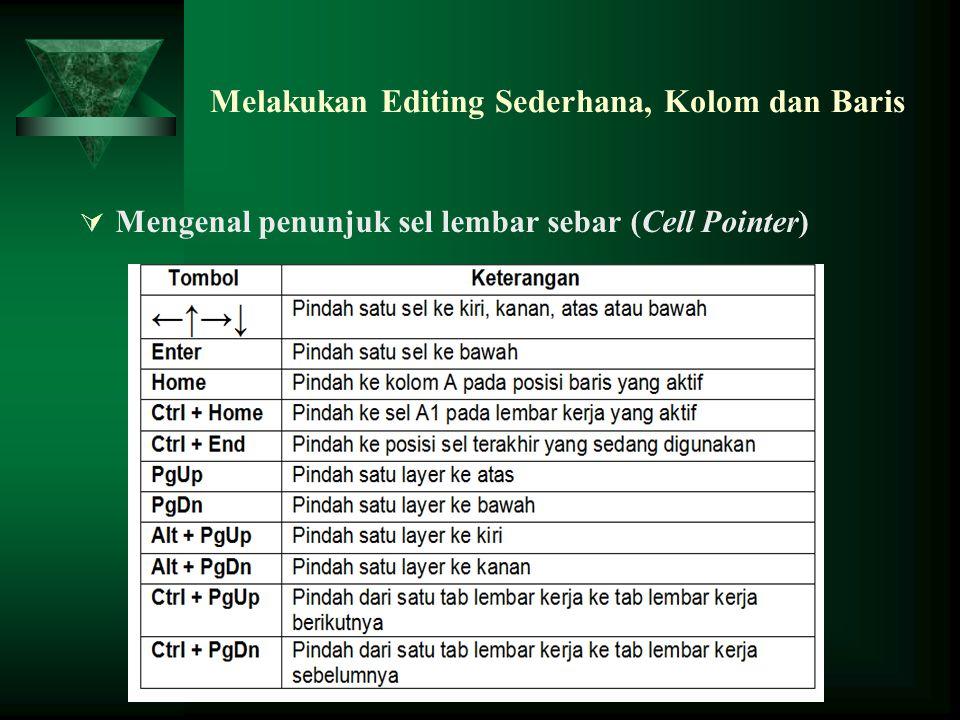 Melakukan Editing Sederhana, Kolom dan Baris  Mengenal penunjuk sel lembar sebar (Cell Pointer)
