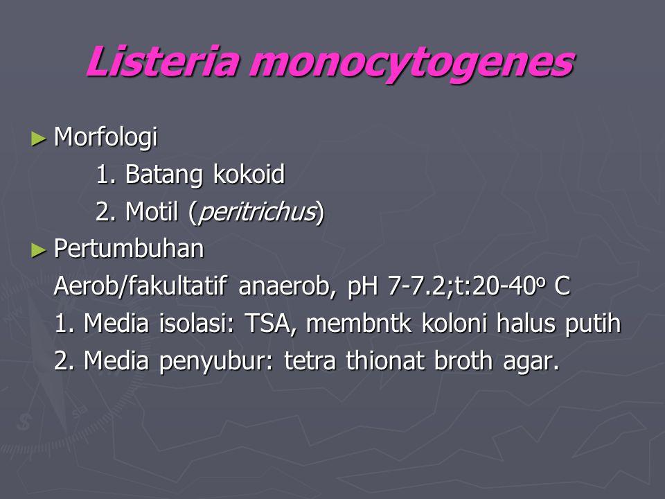 Listeria monocytogenes ► Morfologi 1. Batang kokoid 2. Motil (peritrichus) ► Pertumbuhan Aerob/fakultatif anaerob, pH 7-7.2;t:20-40 o C 1. Media isola