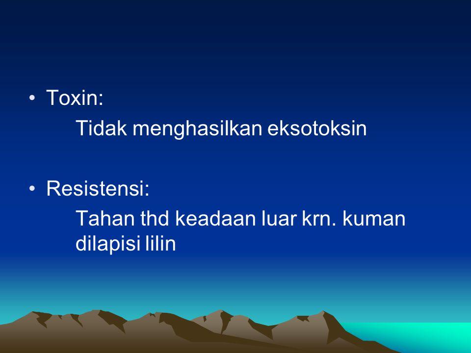 Toxin: Tidak menghasilkan eksotoksin Resistensi: Tahan thd keadaan luar krn. kuman dilapisi lilin