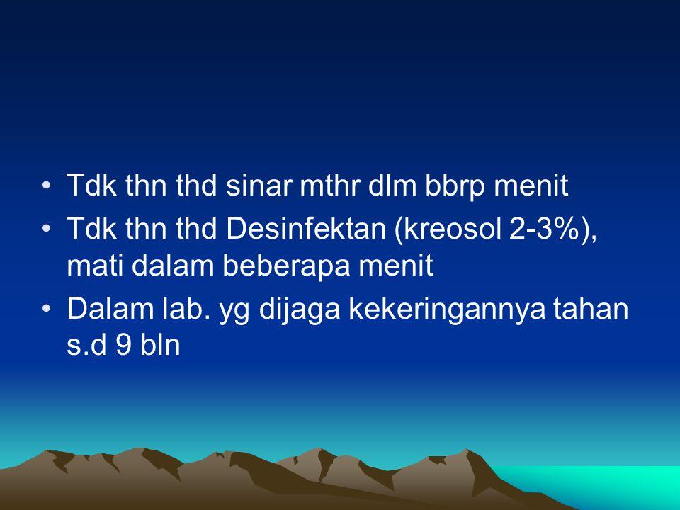 Tdk thn thd sinar mthr dlm bbrp menit Tdk thn thd Desinfektan (kreosol 2-3%), mati dalam beberapa menit Dalam lab. yg dijaga kekeringannya tahan s.d 9