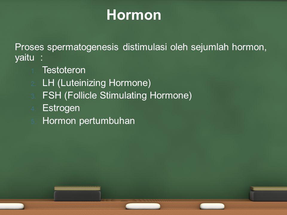 Proses spermatogenesis distimulasi oleh sejumlah hormon, yaitu : 1. Testoteron 2. LH (Luteinizing Hormone) 3. FSH (Follicle Stimulating Hormone) 4. Es