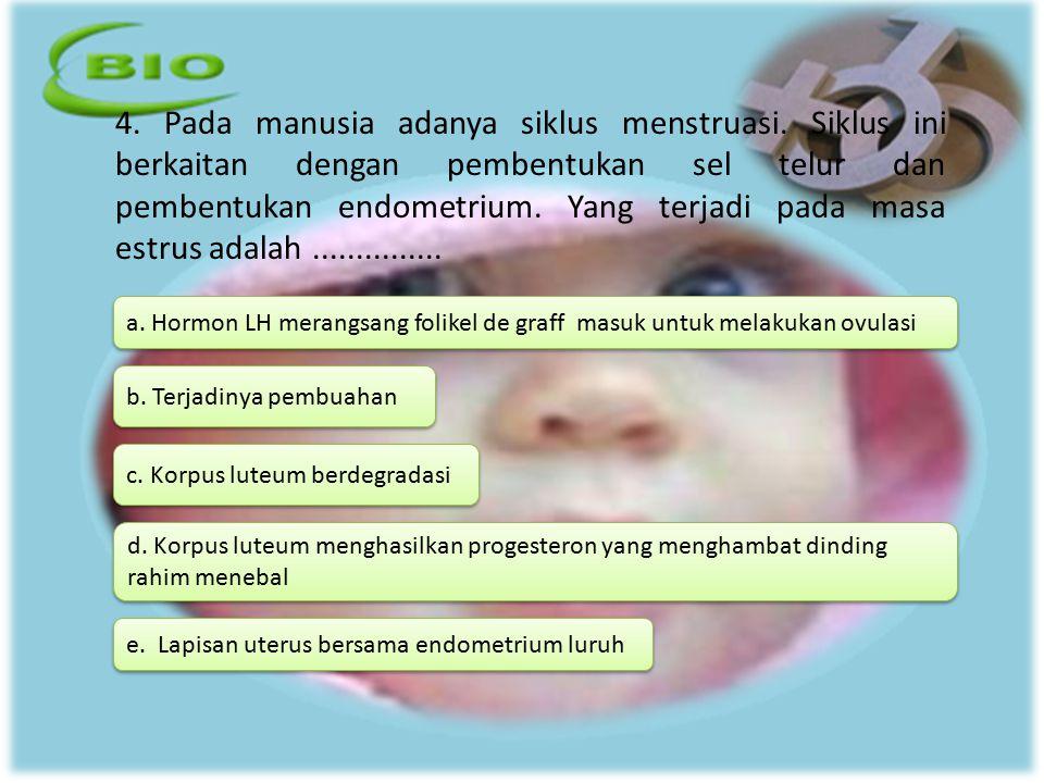 4. Pada manusia adanya siklus menstruasi. Siklus ini berkaitan dengan pembentukan sel telur dan pembentukan endometrium. Yang terjadi pada masa estrus