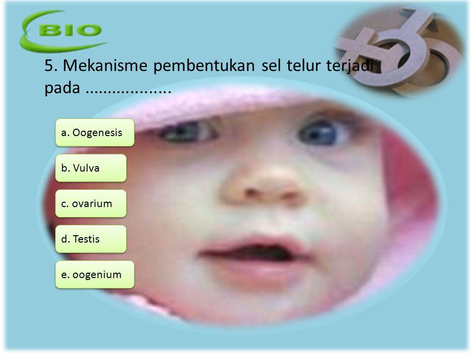 5. Mekanisme pembentukan sel telur terjadi pada................... a. Oogenesis d. Testis b. Vulva c. ovarium e. oogenium