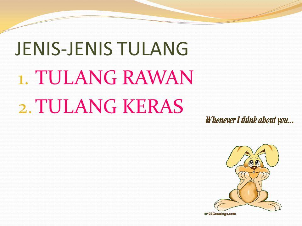 JENIS-JENIS TULANG 1. TULANG RAWAN 2. TULANG KERAS