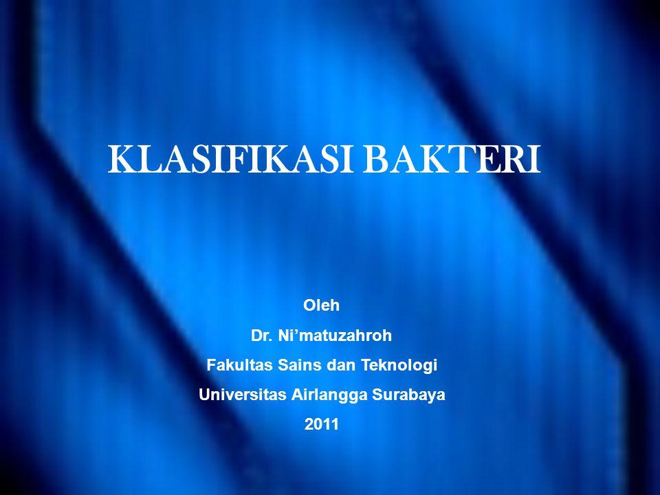 KLASIFIKASI BAKTERI Oleh Dr.