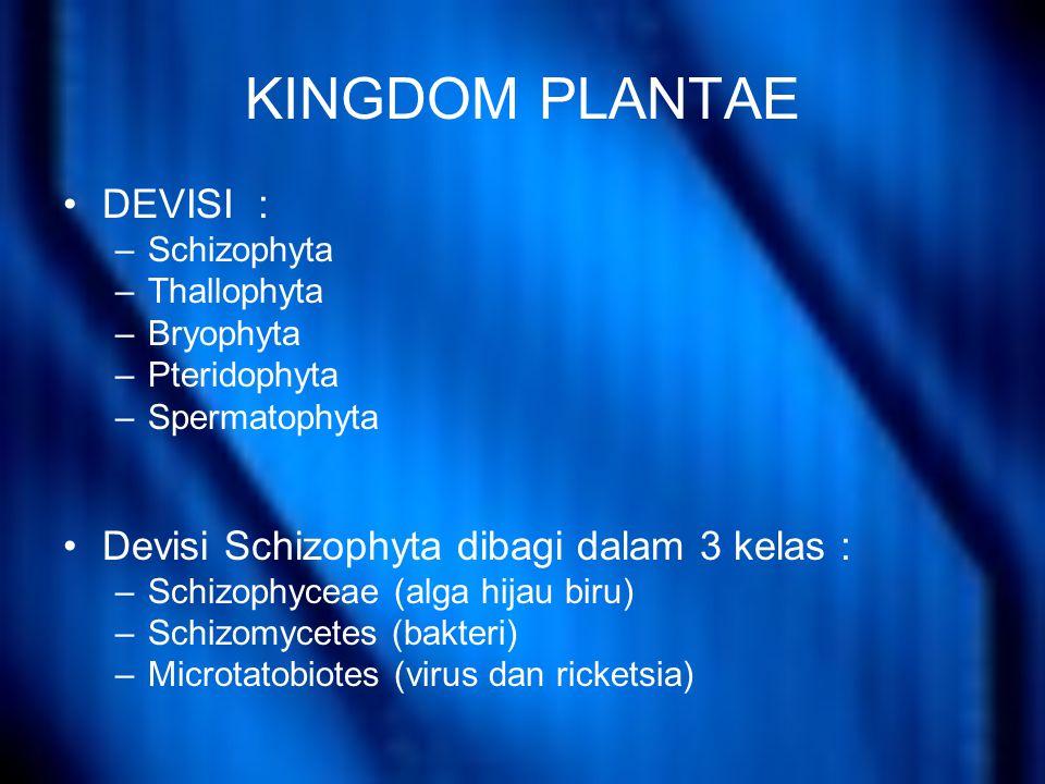 KINGDOM PLANTAE DEVISI : –Schizophyta –Thallophyta –Bryophyta –Pteridophyta –Spermatophyta Devisi Schizophyta dibagi dalam 3 kelas : –Schizophyceae (alga hijau biru) –Schizomycetes (bakteri) –Microtatobiotes (virus dan ricketsia)