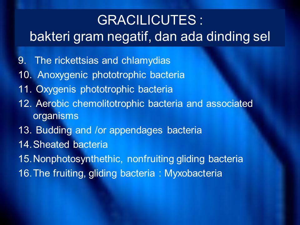 Myxobacteriales Ciri ; –sel-selnya kokoid, bentuk batang, atau batang yang agak meruncing kearah kedua ujungnya (fusiform) –membentuk suatu masa lendir komunal –mempunyai badan buah (fruiting bodies) –selnya tidak kaku (flexuous) –bergerak menjalar diatas permukaan yang keras –tidak berflagela