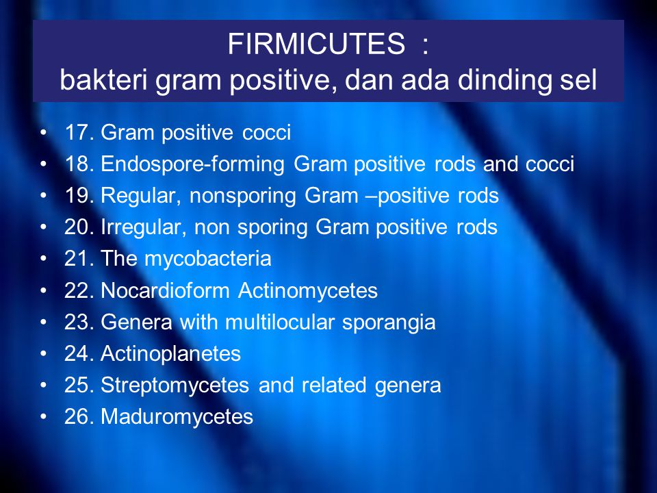 FIRMICUTES : bakteri gram positive, dan ada dinding sel 17. Gram positive cocci 18. Endospore-forming Gram positive rods and cocci 19. Regular, nonspo