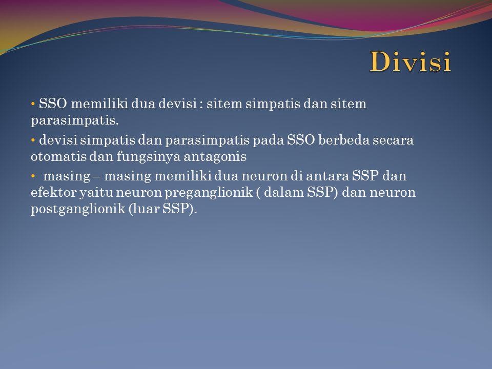 SSO memiliki dua devisi : sitem simpatis dan sitem parasimpatis. devisi simpatis dan parasimpatis pada SSO berbeda secara otomatis dan fungsinya antag