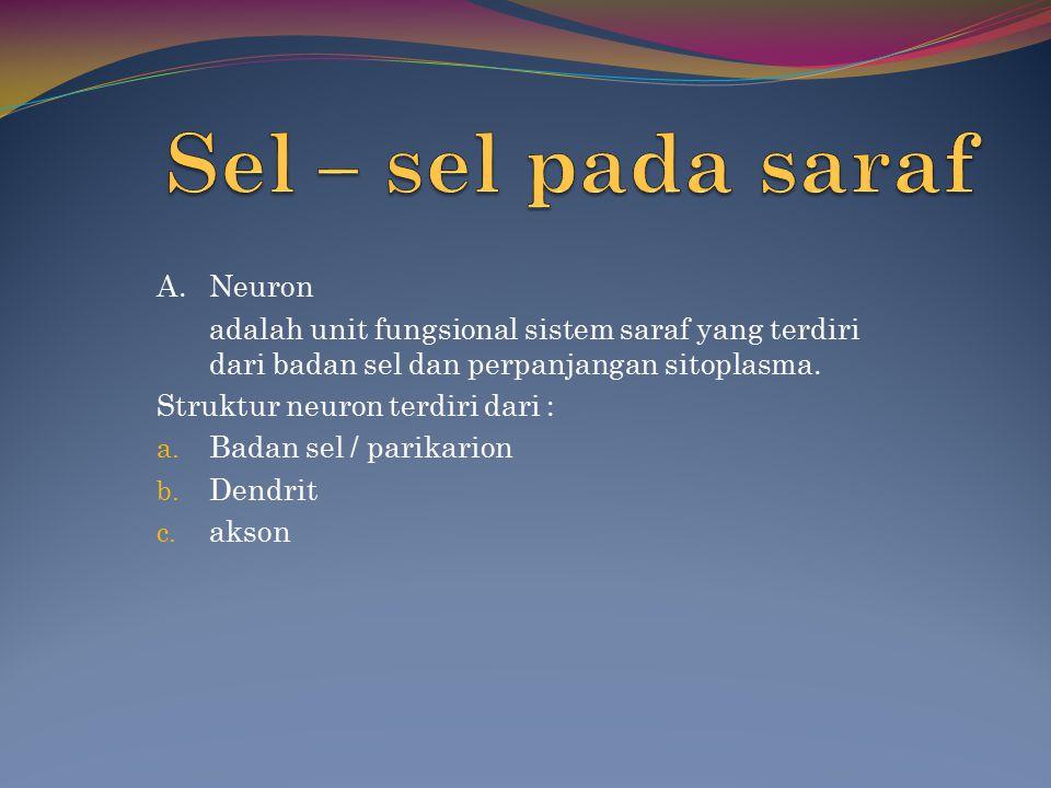 A.Neuron adalah unit fungsional sistem saraf yang terdiri dari badan sel dan perpanjangan sitoplasma.