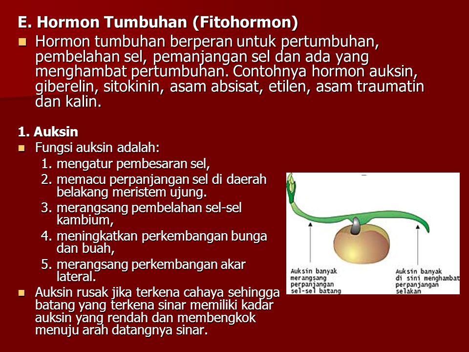 E. Hormon Tumbuhan (Fitohormon) Hormon tumbuhan berperan untuk pertumbuhan, pembelahan sel, pemanjangan sel dan ada yang menghambat pertumbuhan. Conto