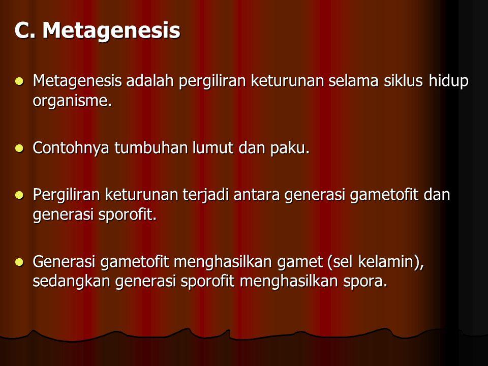 C. Metagenesis Metagenesis adalah pergiliran keturunan selama siklus hidup organisme. Metagenesis adalah pergiliran keturunan selama siklus hidup orga