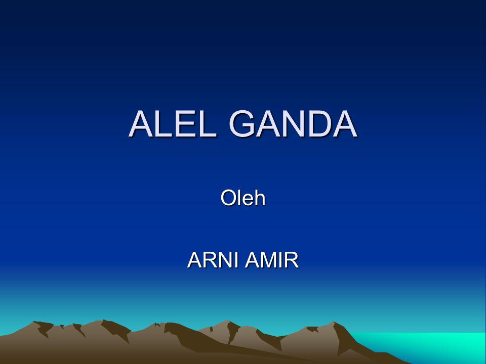 ALEL GANDA Oleh ARNI AMIR