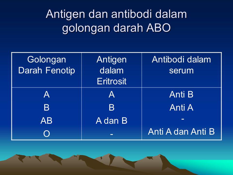 Antigen dan antibodi dalam golongan darah ABO Golongan Darah Fenotip Antigen dalam Eritrosit Antibodi dalam serum A B AB O A B A dan B - Anti B Anti A