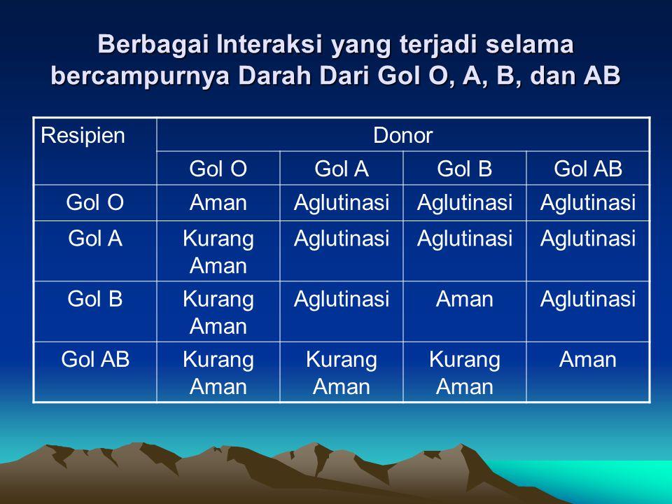 Berbagai Interaksi yang terjadi selama bercampurnya Darah Dari Gol O, A, B, dan AB ResipienDonor Gol OGol AGol BGol AB Gol OAmanAglutinasi Gol AKurang