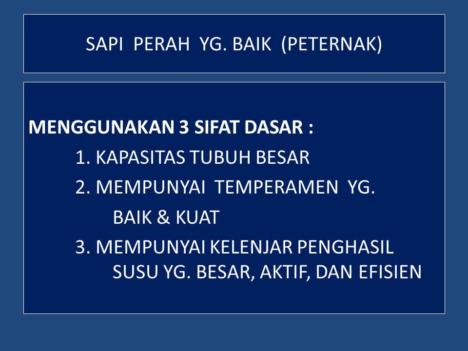 SAPI POTONG (BEEF CATTLE) TIPE POTONG/PEDAGING, DITANDAI : - BERBENTUK SEGI EMPAT - KOMPAK - BERDAGING