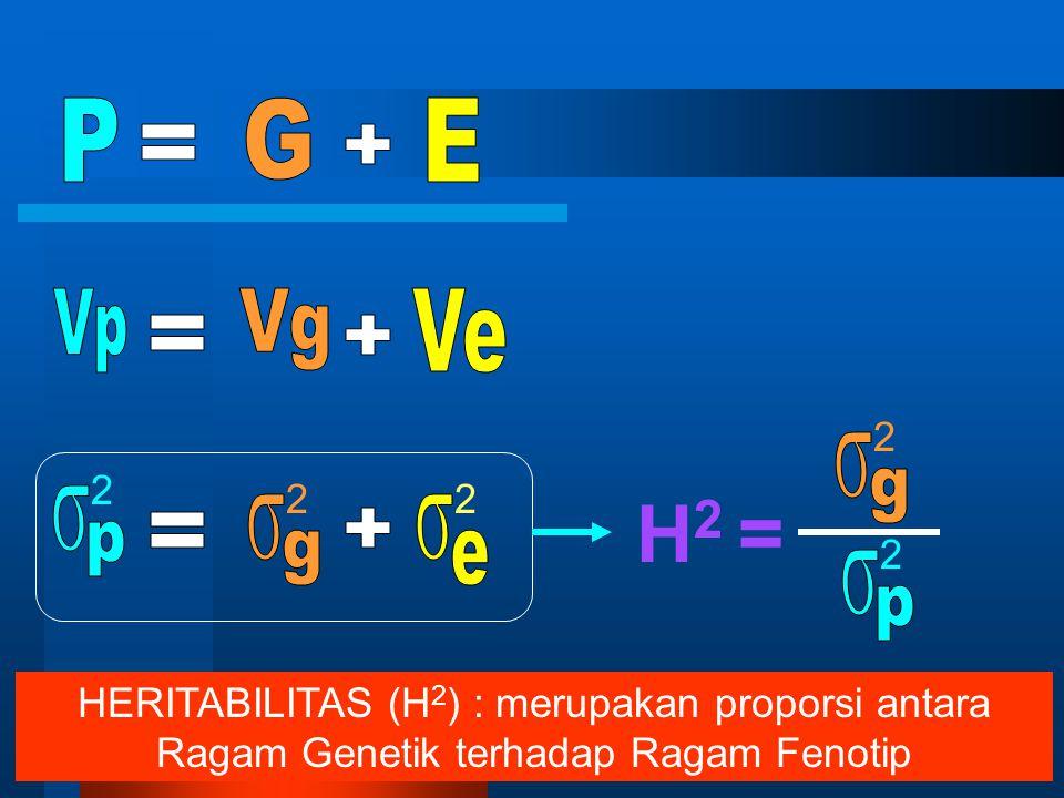 2 2 2 2 2 h 2 = 2 2 Heritabilitas (h 2 ) : merupakan proporsi antara Ragam Aditif terhadap Ragam Fenotip