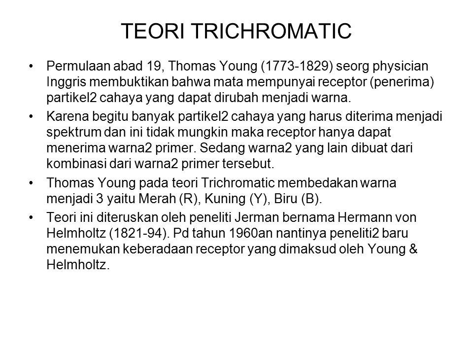 TEORI TRICHROMATIC Permulaan abad 19, Thomas Young (1773-1829) seorg physician Inggris membuktikan bahwa mata mempunyai receptor (penerima) partikel2