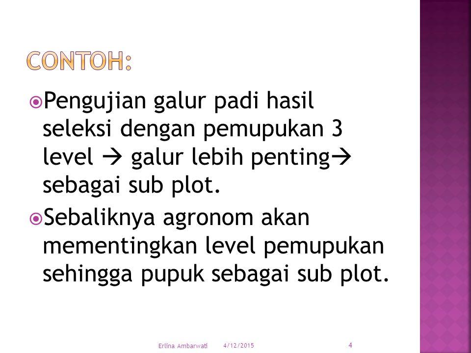  Pengujian galur padi hasil seleksi dengan pemupukan 3 level  galur lebih penting  sebagai sub plot.  Sebaliknya agronom akan mementingkan level p