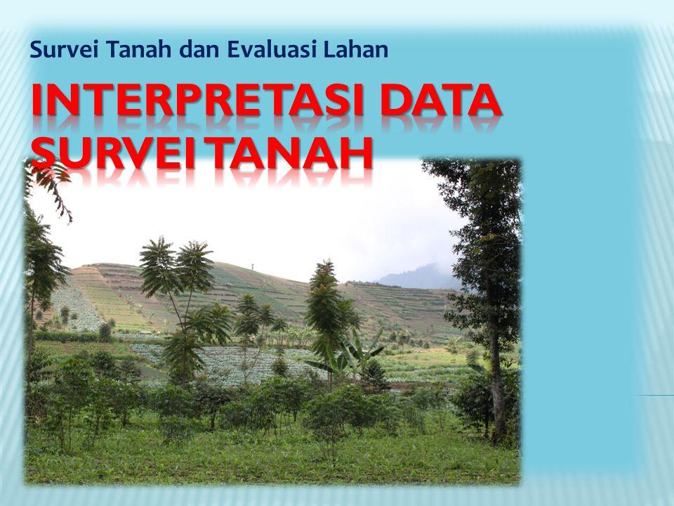 Survei Tanah dan Evaluasi Lahan
