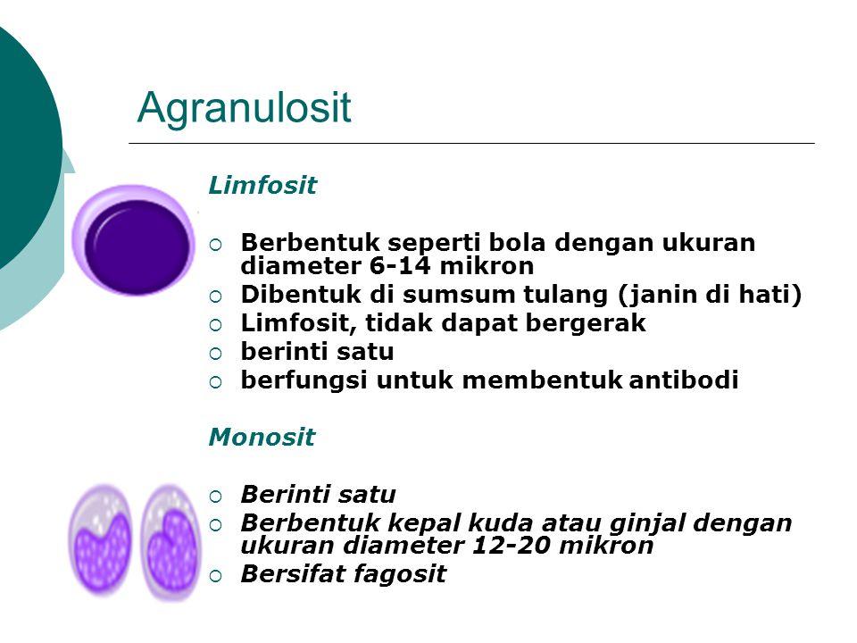 Agranulosit Limfosit  Berbentuk seperti bola dengan ukuran diameter 6-14 mikron  Dibentuk di sumsum tulang (janin di hati)  Limfosit, tidak dapat bergerak  berinti satu  berfungsi untuk membentuk antibodi Monosit  Berinti satu  Berbentuk kepal kuda atau ginjal dengan ukuran diameter 12-20 mikron  Bersifat fagosit