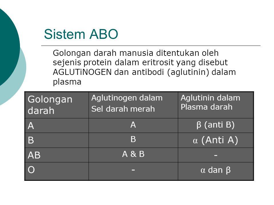 Sistem ABO Golongan darah manusia ditentukan oleh sejenis protein dalam eritrosit yang disebut AGLUTiNOGEN dan antibodi (aglutinin) dalam plasma Golongan darah Aglutinogen dalam Sel darah merah Aglutinin dalam Plasma darah A Aβ (anti B) B B α (Anti A) AB A & B - O- α dan β