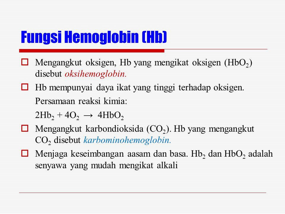 Fungsi Hemoglobin (Hb)  Mengangkut oksigen, Hb yang mengikat oksigen (HbO 2 ) disebut oksihemoglobin.  Hb mempunyai daya ikat yang tinggi terhadap o