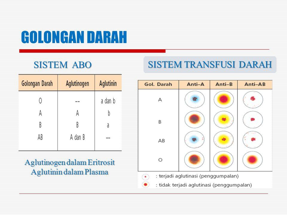 GOLONGAN DARAH Aglutinogen dalam Eritrosit Aglutinin dalam Plasma SISTEM ABO SISTEM TRANSFUSI DARAH