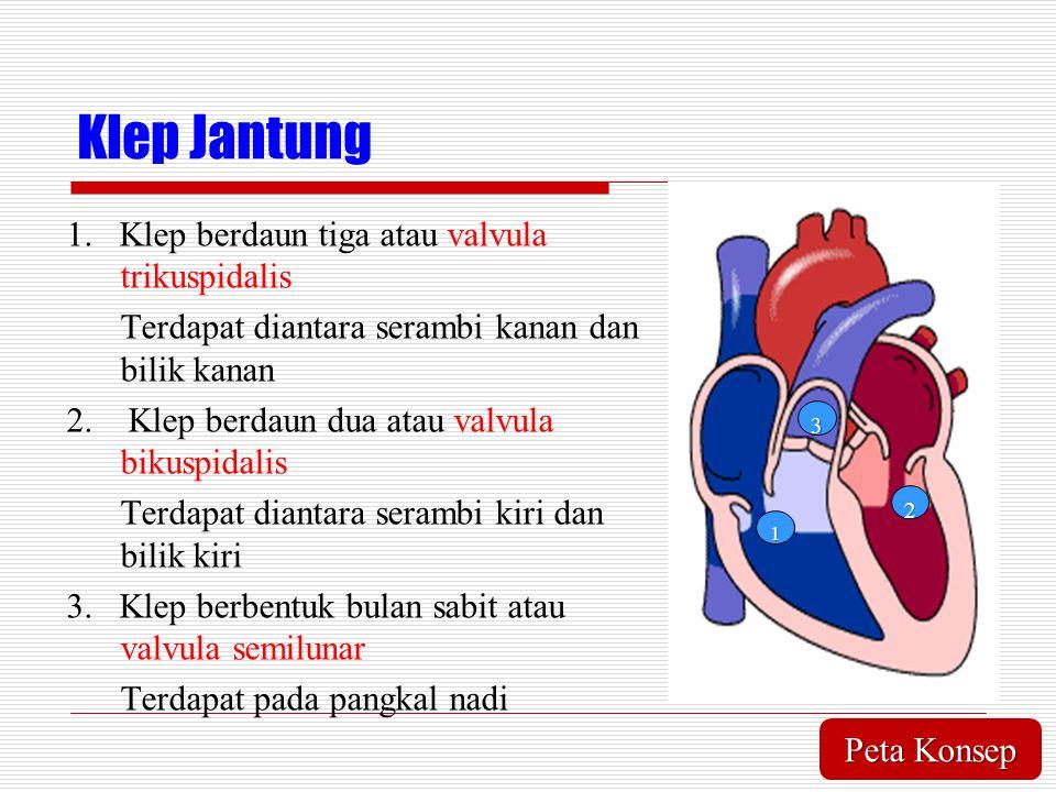 Klep Jantung 1. Klep berdaun tiga atau valvula trikuspidalis Terdapat diantara serambi kanan dan bilik kanan 2. Klep berdaun dua atau valvula bikuspid