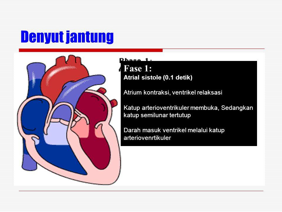 Denyut jantung Fase 1: Atrial sistole (0.1 detik) Atrium kontraksi, ventrikel relaksasi Katup arterioventrikuler membuka, Sedangkan katup semilunar tertutup Darah masuk ventrikel melalui katup arteriovenrtikuler
