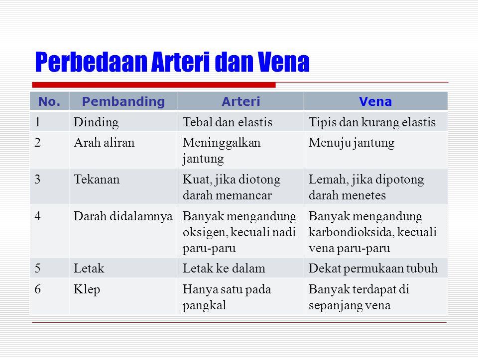 Perbedaan Arteri dan Vena No.PembandingArteriVena 1DindingTebal dan elastisTipis dan kurang elastis 2Arah aliranMeninggalkan jantung Menuju jantung 3TekananKuat, jika diotong darah memancar Lemah, jika dipotong darah menetes 4Darah didalamnyaBanyak mengandung oksigen, kecuali nadi paru-paru Banyak mengandung karbondioksida, kecuali vena paru-paru 5LetakLetak ke dalamDekat permukaan tubuh 6KlepHanya satu pada pangkal Banyak terdapat di sepanjang vena