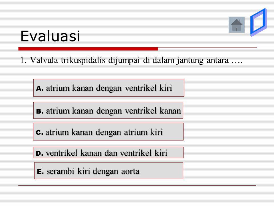 Evaluasi 1. Valvula trikuspidalis dijumpai di dalam jantung antara …. atrium kanan dengan ventrikel kanan B. atrium kanan dengan ventrikel kanan atriu