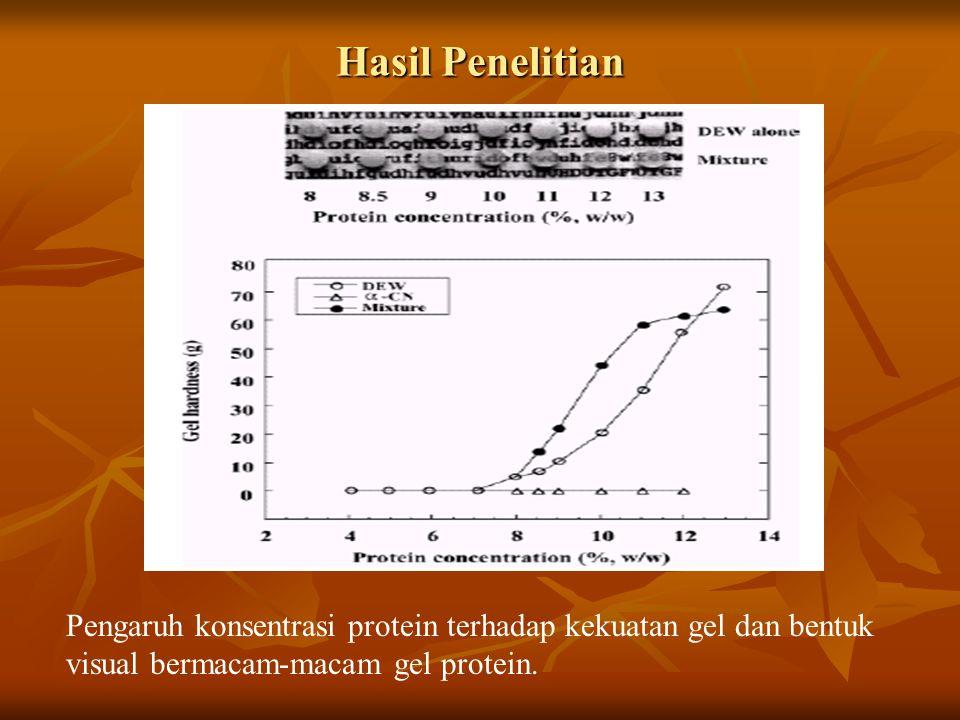 Hasil Penelitian Pengaruh konsentrasi protein terhadap kekuatan gel dan bentuk visual bermacam-macam gel protein.